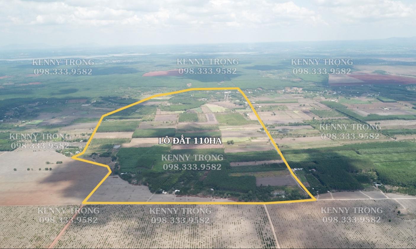 Lô đất cực rộng 110ha phù hợp cho tái định cư, nông nghiệp công nghệ cao tại ...